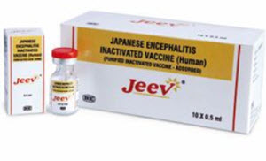 Japanese encephalitis vaccine